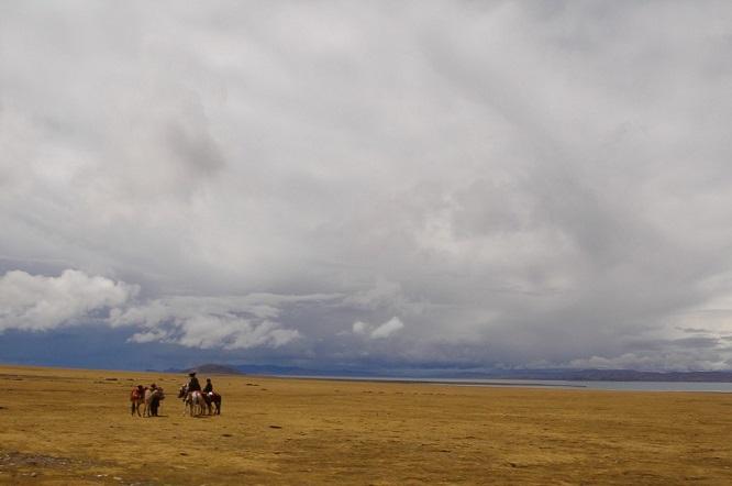 wędrowcy na koniach na polach