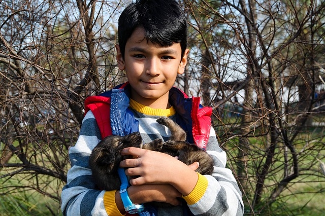 Chłopiec trzymający psa na rękach