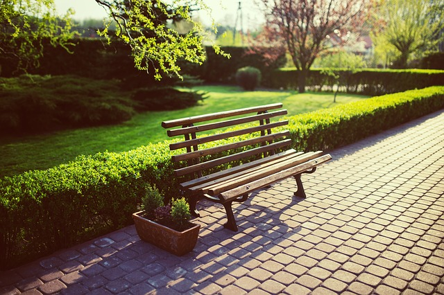 kostka-brukowa-park-ławka